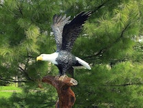 Photo of Eagle Sculpture