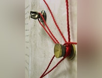 Photo of The Scarlet Cord