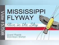 Photo of Mississippi Flyway: Alive in the Sky