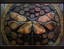 Photo of Fossilized Dragonfly