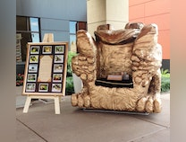 Photo of The Frog Chair